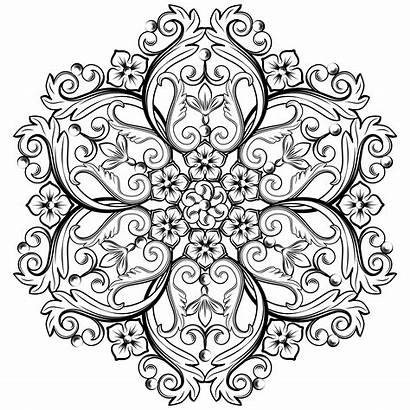 Round Vector Ornamental Element Colors Illustration Flowers