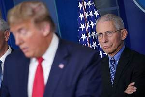 Absolutely Free Resume Dr Fauci Says Trump Is 39 Not Absolutely Wed 39 To Reopening