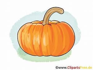 Nutzungsrechte Illustration Berechnen : kuerbis illustration bild clipart ~ Themetempest.com Abrechnung
