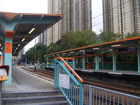 light rail stops shek pai stop