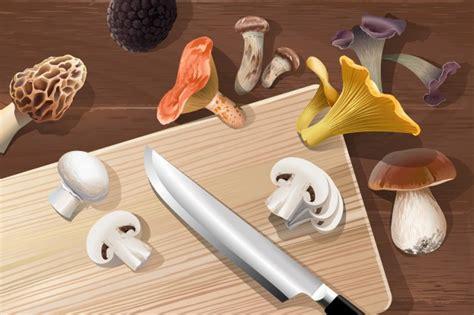 Tipi Di Funghi Da Cucinare by Vector Sfondo Con Vari Tipi Di Funghi Commestibili