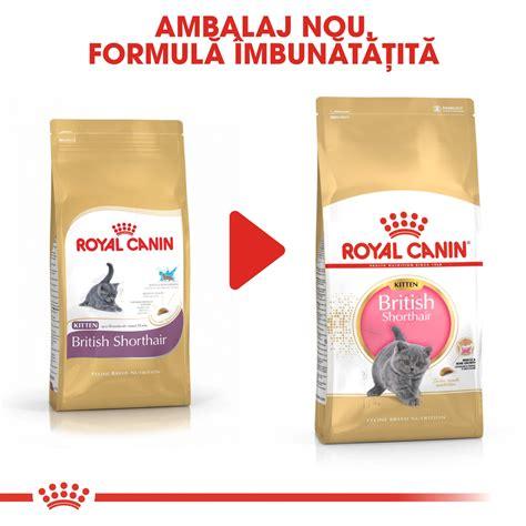 Royal Canin 10kg by Royal Canin Shorthair Kitten 10 Kg Hrana Pisici