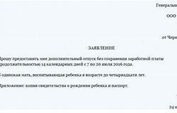 Заявление на отпуск директора предприятия