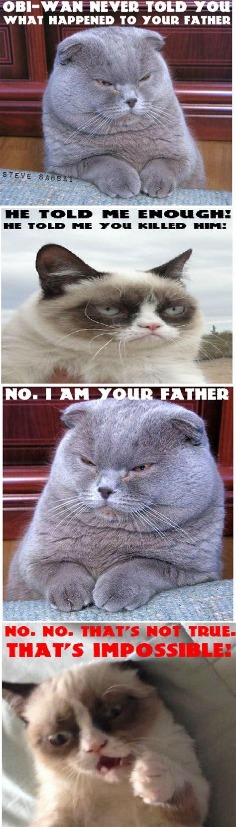 Grumpy Cats Father Vader Empire Star Wars Memes Grumpy
