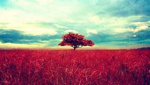 Retro, Color, Landscape, Tree, Wallpapers, Hd, Desktop, And, Mobile, Backgrounds