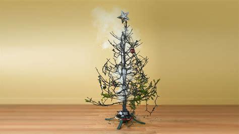 Weihnachtsbaum Ohne Nadeln by Weihnachtsbaum Kaufen Tipps Zu Kauf Transport Pflege