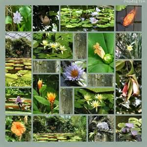 Scrapbook Collage Ideas Designs