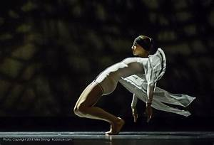 The Dance Bible - Contemporary Dance