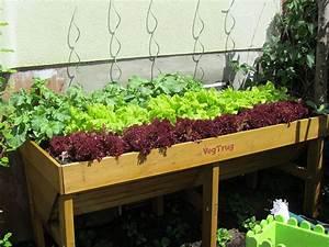 Gemüse Pflanzen Was Passt Zusammen : gem se das sich gut vertr gt und gem se das sich nicht gut ~ Lizthompson.info Haus und Dekorationen