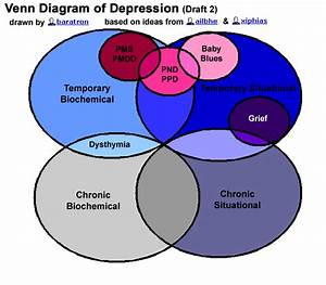 The Venn Diagram Of Depression  Draft 2