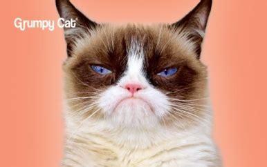 grumpy cat design cardcom prepaid visa card cardcom