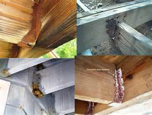 salt can corrode your deck hardware use cma instead