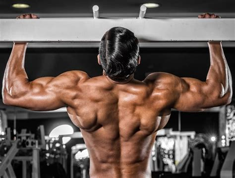Complete Lats Workout for Beginners