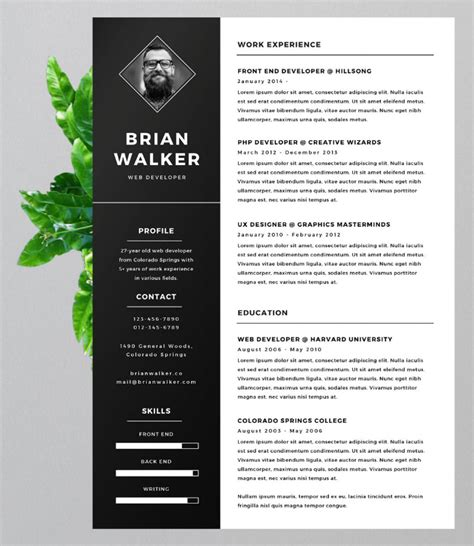 Eye Catching Resume Words by 15 Eye Catching Resume Templates That Will Get You Noticed