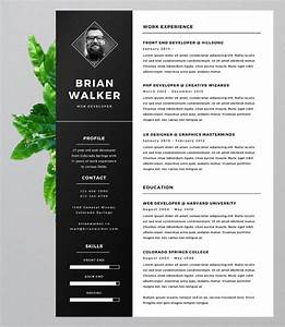 eye catching resume templates resume ideas With eye catching resume templates