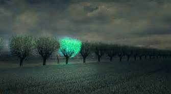 Luminescent Lamps by Future Cities Lit By Beautiful Bioluminescent Trees Big
