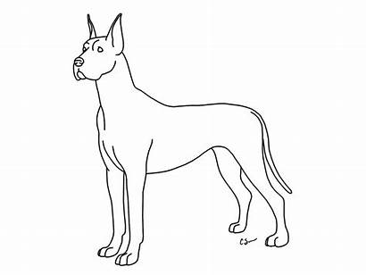 Dane Coloring Pages Dog Deviantart Lps Drawings