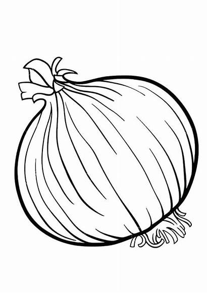 Coloring Onion Indiaparenting