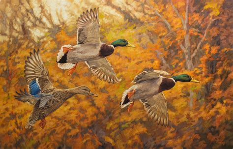 "Ryan Kirby Art ? Original Mallard Painting ""Fall Break"" by"