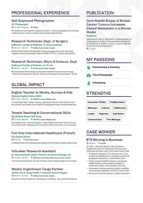 Resume Pattern Sle by Professional Summary For Sql Developer The Best