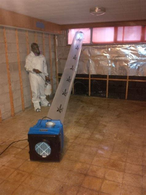 mold removal testing  remediation services  anjou