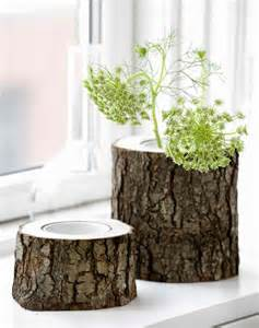 kreative ideen kreative ideen zum selbermachen originelle vasen aus baumstümpfen