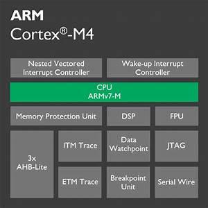 Cortex-m4 Processor