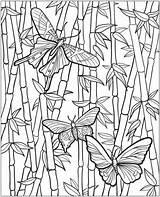 Gardening Coloring Colouring Vegetable Vegetables Gardens Flower sketch template