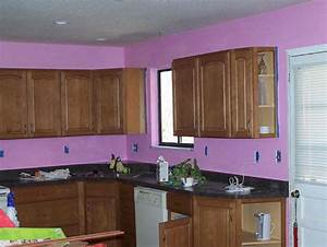 purple kitchen walls home design With kitchen cabinets lowes with purple and black wall art