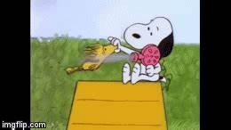 Snoopy Drying Woodstock Imgflip