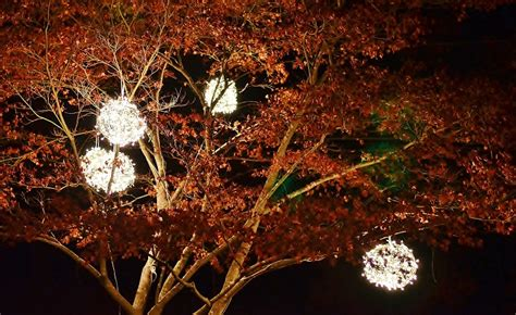 hanging lighted christmas balls princess decor