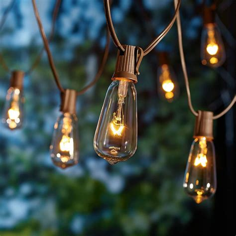 10 Count Glass Edison String Lights, Indoor Outdoor