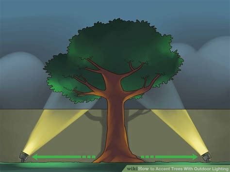 accent trees 4 ways to accent trees with outdoor lighting wikihow