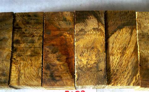 black oak burl wood wow wood  oregonburls