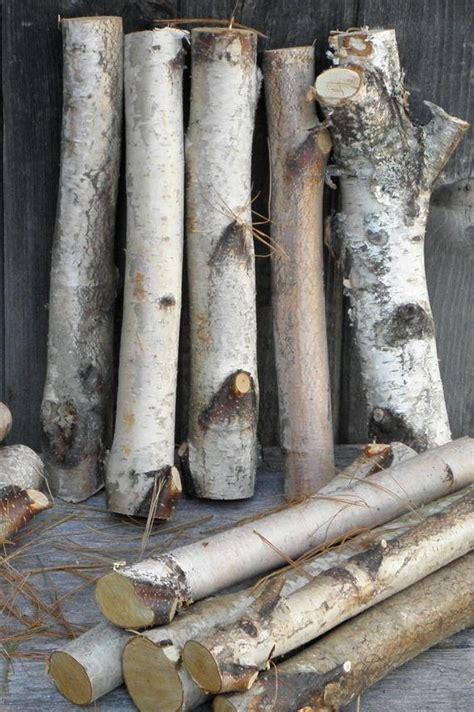 Decorative Birch Logs - white birch logs 1 2 diameter decorative by therusticwoodshed