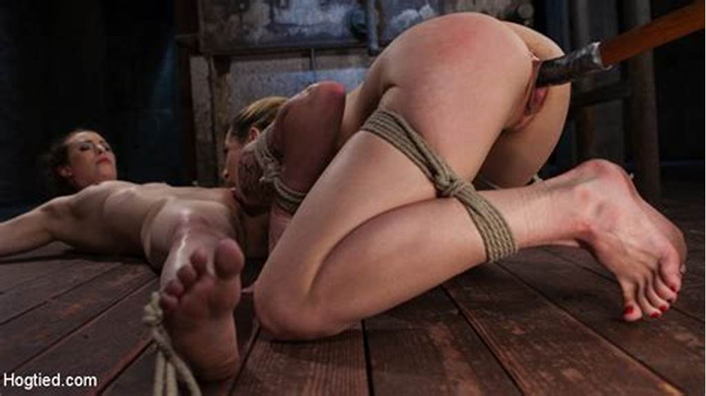 #Hogtied #Picture #Gallery #Update