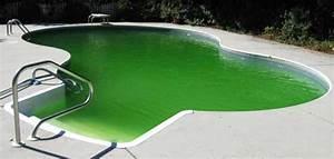 Nettoyer Piscine Verte : invasion d algue piscine verte que faire ~ Zukunftsfamilie.com Idées de Décoration