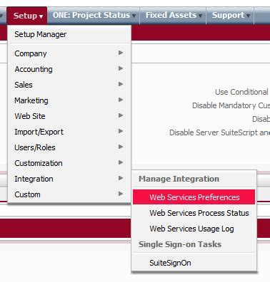 find  net suite account number  web service