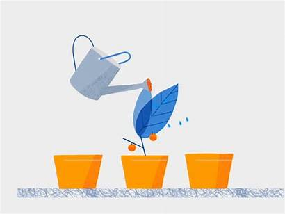 Animation Dribbble Vector Chile Watering Growing Plant