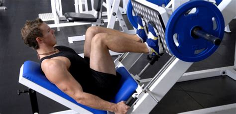 votre avis programme de musculation