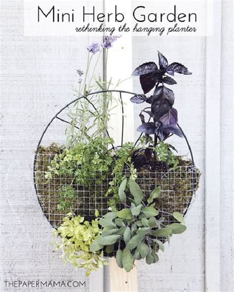 hanging herb garden ideas  small spaces balcony