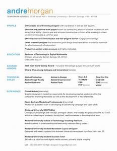 CV Format Design CV Templates CV Samples Example