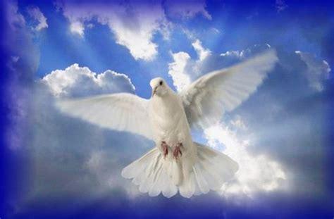 das peace zeichen wirklich ein symbol des friedens