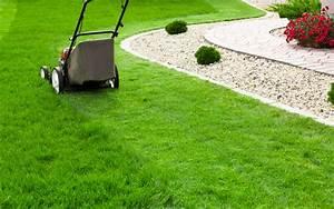 Schnittgut Alles Aus Dem Garten : 10 dinge die du aus deinem garten verbannen solltest ~ Buech-reservation.com Haus und Dekorationen