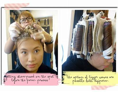 Hair Ion Organic Pha Eco Friendly Perm