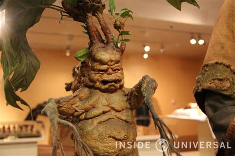 screaming plants harry potter 1000 images about harry potter mandrake ideas on pinterest crafting name labels and the plant