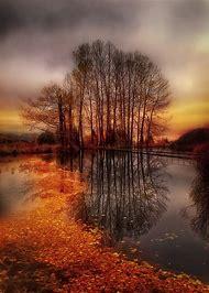 Beautiful Sunset Autumn Fall Colors