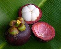 Résultat d'images pour Fruit des Dieux, le Mangoustan