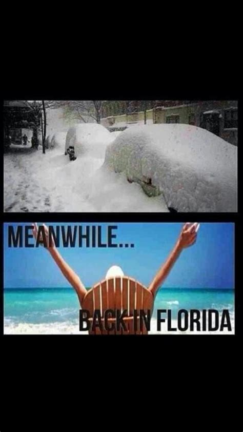 Florida Winter Meme - 17 best images about winter in florida on pinterest beach cottages warm and reindeer
