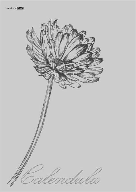 Instead Of A Zodiac Tattoo, Choose A Birth Flower Instead